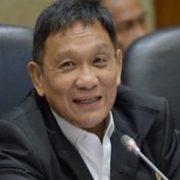 Inas Zubir: EBT di Indonesia Hanya Fatamorgana