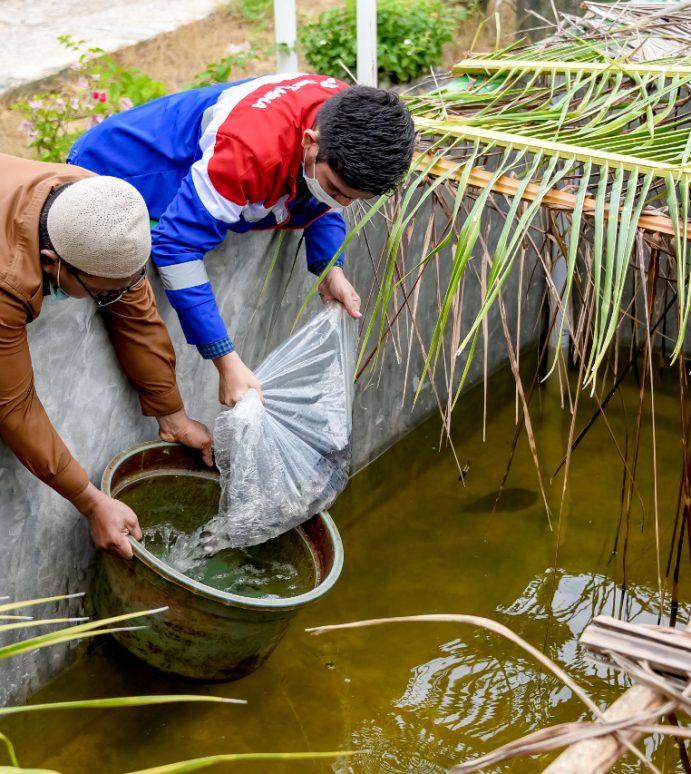 Tingkatkan Kesejahteraan Nelayan Kota Dumai, Pertamina Salurkan 4.500 Bibit Ikan