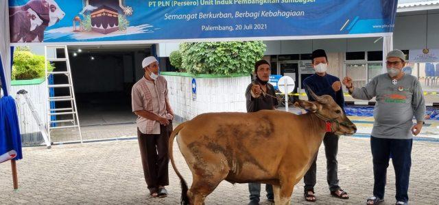 Sambut Idul Adha 1442 H, PLN Grup Sumbang 2.977 Hewan Kurban
